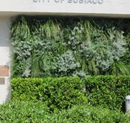 Native Green Wall Trial