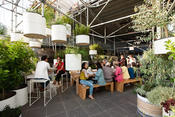 The Immersery: Festival Kitchen, Bar and Raingarden
