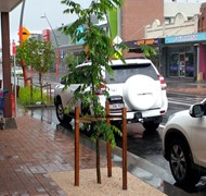 Singleton Town Centre - Water Sensitive Urban Design